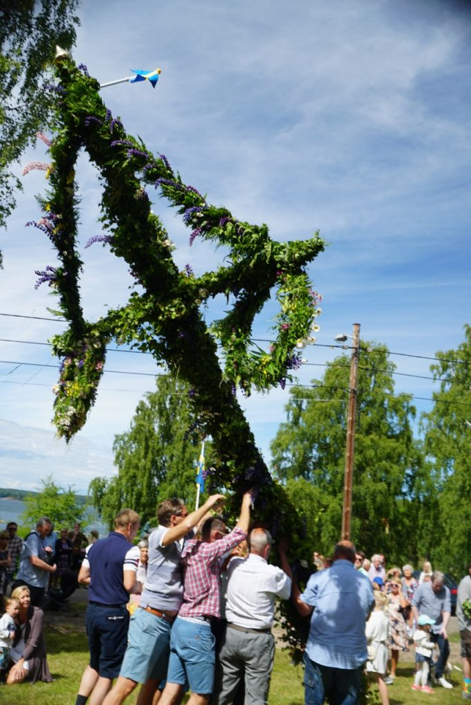 Raising the Midsommar celebratory pole