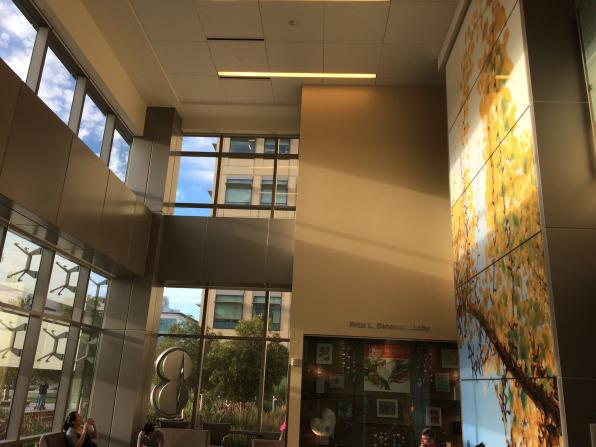 The atrium of the Children's Hospital